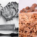 Ny forskning: Protein fra kød er usundt