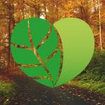 Grønne højdepunkter i 2020